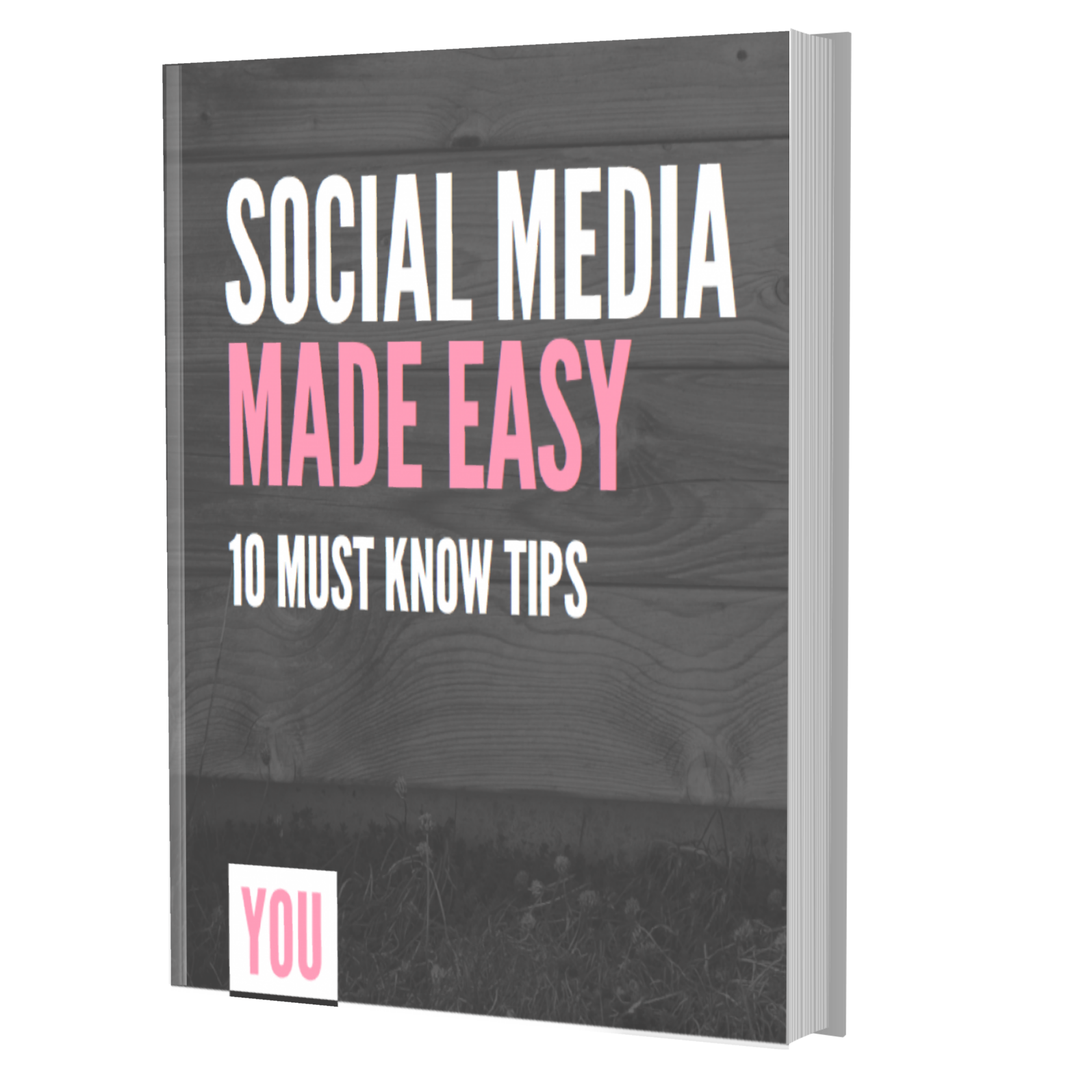 Social Media voor beginners E-book